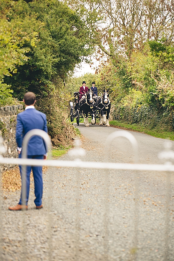 Autumn wedding at Wolfscastle by Whole Picture Weddings